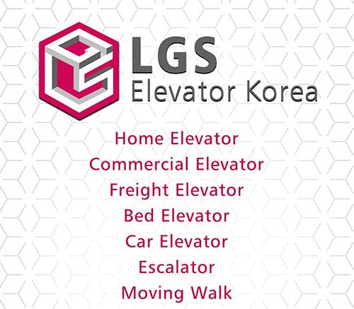 Executive Home Elevator