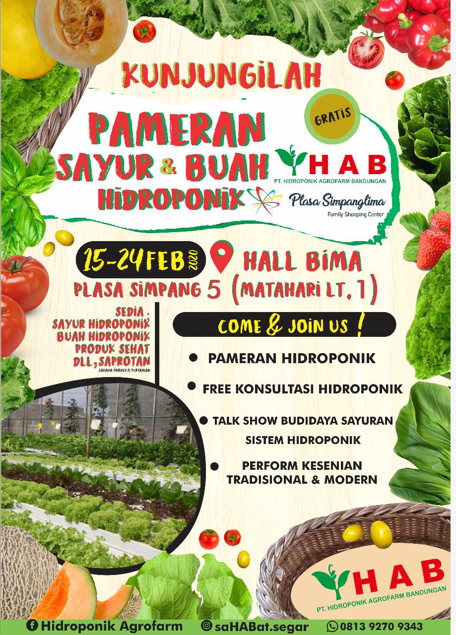 Pameran Sayur & Buah Hidroponik (Hidroponik Agrofarm Bandungan)